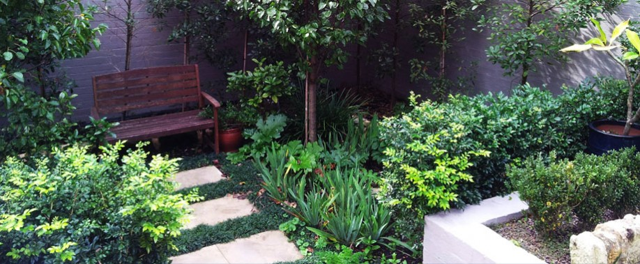 Grant taylor 39 d gardens garden design and maintenance for Garden designs sydney